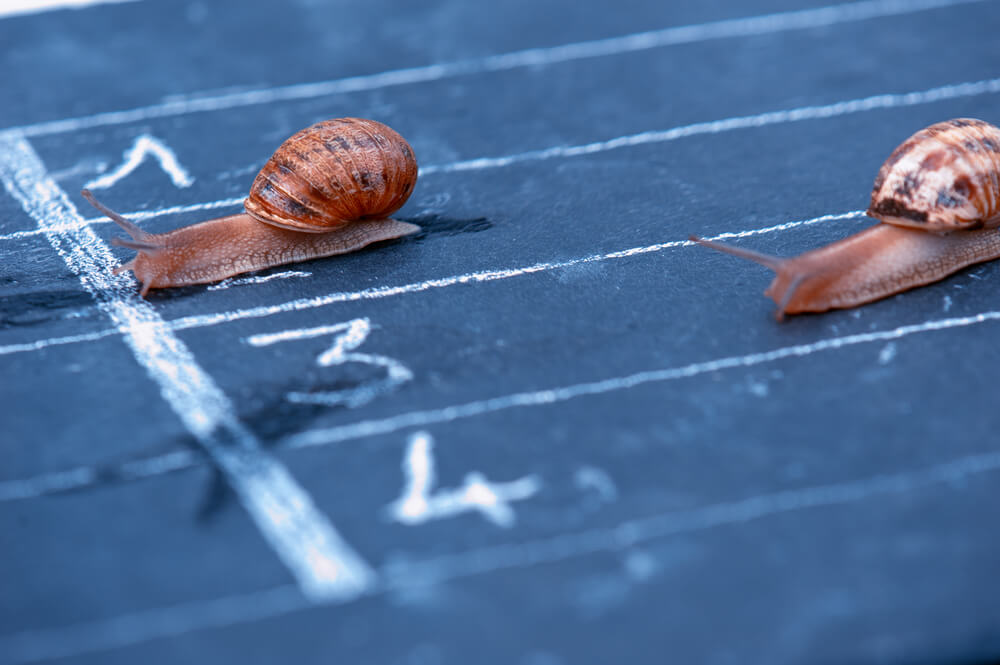 3 Solution Selling Levers to Speed Up Your Sales Cycle