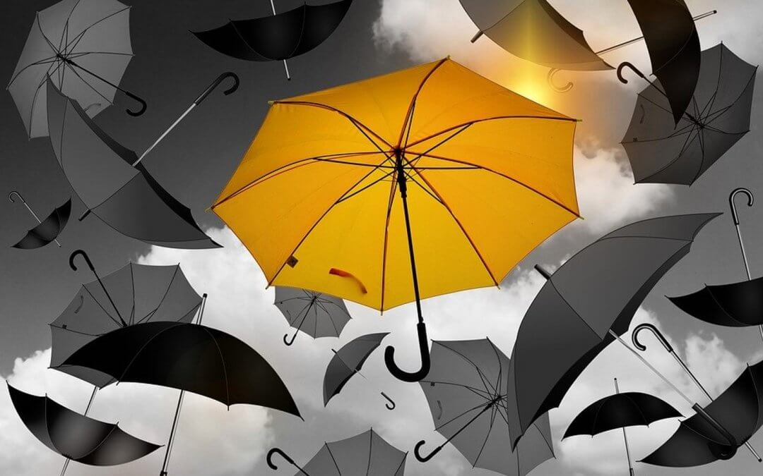 yellow umbrella is one of the Top B2B Sellers