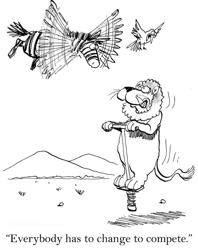 "A cartoon zebra is in the air trying to fly while a lion in below on a pogo stick with the caption, ""Everyone has to change to compete."""