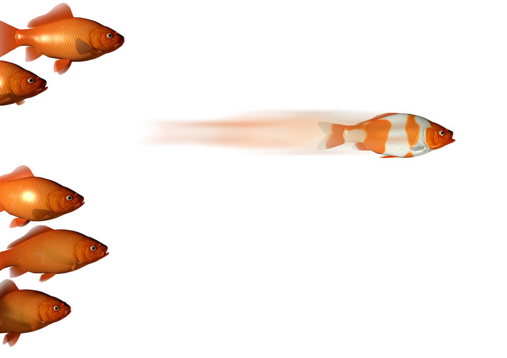 one differently colored fish moves ahead of all the others just like a differentiated selling solution